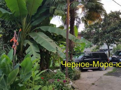 Абхазия гостевой дом «Макс» в Сухуми по ул. Вавилова, 24